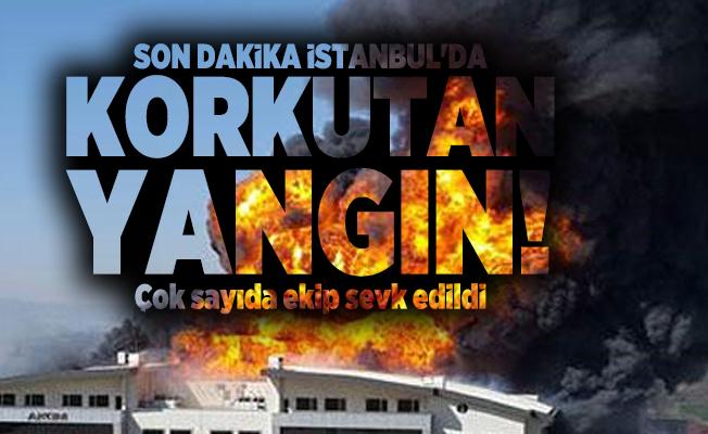 Son dakika İstanbul'da korkutan yangın! Çok sayıda ekip sevk edildi