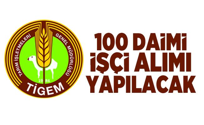 Tarım İşletmeleri Genel Müdürlüğü (TİGEM) daimi 100 işçi alımı yapacak!
