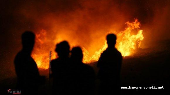 Ankara'da Bir Çiftlikte Yangın Çıktı