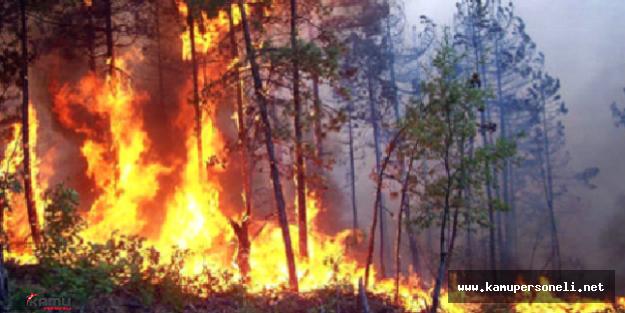 Antalya Kemer'de Yangın Alarmı