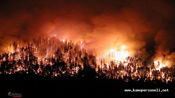 Balıkesir'deki Orman Yangınında Bir Hektarlık Alan Zarar Gördü