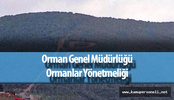 Hususi Ormanlar ve Hükmi Şahsiyeti Haiz Amme Müessseselerine Ait Ormanlar Yönetmeliği