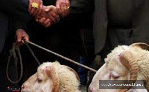 Koyunlarını Satıp Borcunu Ödeyen Çiftçiye Kaymakamdan Hediye