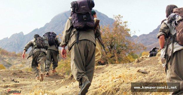 Lice'de Yakalanan Teröristlerin İtirafları Yayımlandı