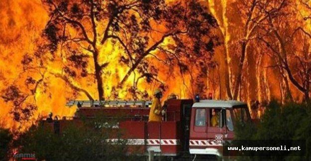 """Orman Bölge Müdürü Mehmet Çelik; """"Yangınlarda geçen yıla oranla yaklaşık 2 kat artış yaşandı"""""""