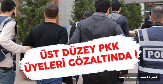 PKK'nın Üst Düzey Elemanları Gözaltında