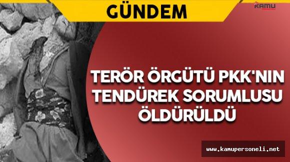 Terör Örgütü PKK'nın Sözde Tendürek Sorumlusu Öldürüldü
