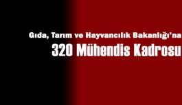 Gıda Tarım ve Hayvancılık Bakanlığı'na 320 Mühendis Kadrosu Verildi