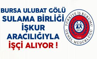 Bursa Ulubat Gölü Sulama Birliği İşçi Alımı Yapıyor