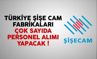 Türkiye Şişe ve Cam Fabrikaları personel alımı yapacak
