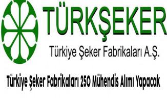 Türkiye Şeker Fabrikaları 250 Mühendis Alımı Yapacak