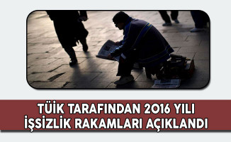 TÜİK 2016 Yılı İşsizlik Rakamlarını Açıkladı