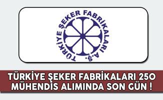 Türkiye Şeker Fabrikaları 250 Mühendis Alımında Son Gün !
