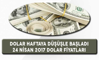 Dolar Haftaya Düşüşle Başladı (24 Nisan 2017 Dolar Ne Kadar?)