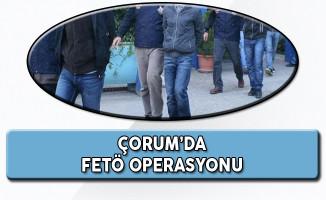 FETÖ Operasyonu Kapsamında Çorum'da 23 Gözaltı!