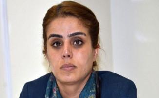 HDP Batman Milletvekili Ayşe Acar Başaran Gözaltına Alındı!