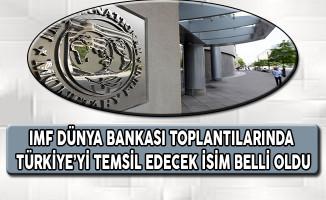IMF Dünya Bankası Toplantılarında Türkiye'yi Temsil Edecek İsim Belli Oldu