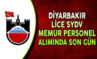 Diyarbakır Lice SYDV Memur Personel Alımında Son Gün !
