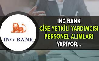 ING Bank Gişe Yetkili Yardımcısı Personel Alımları Yapıyor