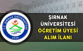Şırnak Üniversitesi Öğretim Üyesi Alım İlanı