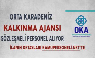 Orta Karadeniz Kalkınma Ajansı Sözleşmeli Personel Alım İlanı
