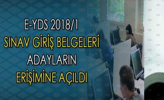 Yılın İlk Elektronik YDS'si İçin (e-YDS 2018/1) Sınav Giriş Belgeleri Yayımlandı