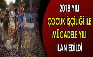 2018 Yılı Çocuk İşçiliği İle Mücadele Yılı Olarak İlan Edildi