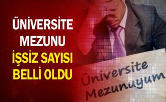Üniversite Mezunu İşsiz Sayısı Belli Oldu