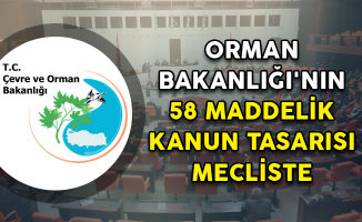 Orman Bakanlığı'nın 58 Maddelik Kanun Tasarısı Mecliste