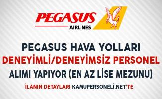 Pegasus Hava Yolları Deneyimli/Deneyimsiz Personel Alıyor (En Az Lise Mezunu)