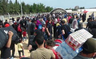 Türkiye'nin Yüzde 4.43'ü Suriyeli'ler'den Oluşuyor
