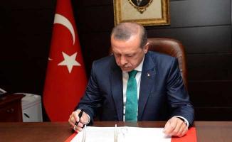 Cumhurbaşkanı Erdoğan Danıştay Üyelerini Belirledi