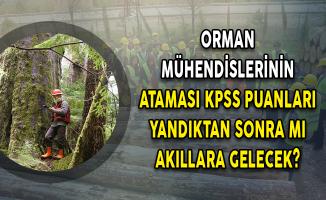 Orman Mühendislerinin Ataması KPSS Puanları Yandıktan Sonra Mı Akıllara Gelecek?