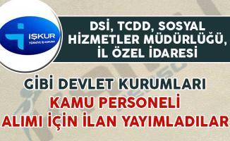 Sosyal Hizmetler Müdürlüğü, DSİ, TCDD Gibi Kurumlar Kamu Personeli Alıyor