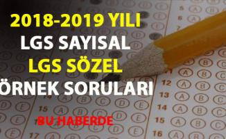 2019 LGS sözel-LGS sayısal örnek sorular yayımlandı