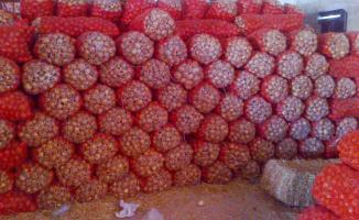 Soğan Fiyatları Kaç TL Olacak? Stokçular Piyasaya Mal Vermiyor