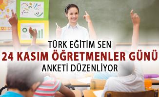 Türk Eğitim Sen 24 Kasım Öğretmenler Günü Anketi