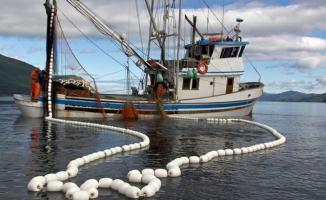 Balıkçılara Destek Ödemesi Yapılıyor- balıkçılık destekleri nasıl alınır- balıkçılık destekleri 2018