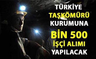 Türkiye Taşkömürü ocağına işçi alımı iş ilanı