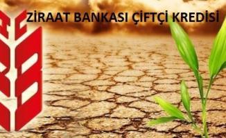 Ziraat Bankası, Tarımsal kredileri yeniden yapılandıracak