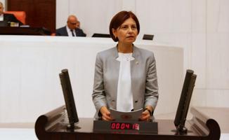 CHP'li Emecan:  Her Getirdiğiniz Torbayla Yasamayı Oy Avcılığı Ekonomisine De Hizmet Eder Hale Getirdiniz