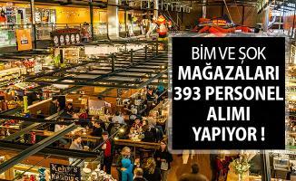 İlanlar İŞKUR Üzerinden Yayımlandı ! BİM ve Şok Mağazalarına 393 Personel Alınıyor