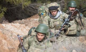 Türkiye'nin Afrin operasyonu sahada ve diplomaside neleri değiştirdi?