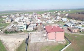 Diyarbakır'daki Bu Mahallenin Sakinleri 4 Dil Biliyor