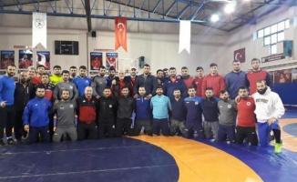 Güreş Milli Takımımız, Dan Kolov-Nikola Petrov Turnuvası'nda madalya kovalıyor