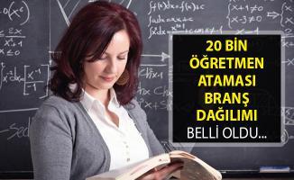 20 Bin Öğretmen Ataması Branş Dağılımı Belli Oldu- Öğretmen Ataması Hangi Branşlarda Yapılacak?