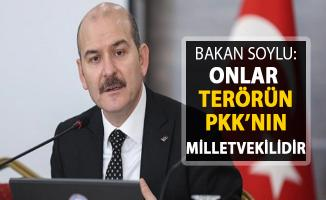 Bakan Soylu: Onlar PKK'nın Milletvekilleridir