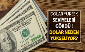 Dolar En Yüksek Seviyeleri Gördü ! Dolar Neden Yükseliyor?