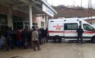 Hakkari'de yolcu minibüsüyle kamyonetin çarpışması sonucu 12 kişi yaralandı