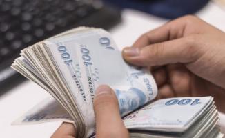 Rus Uzmanından Türkiye'deki Enflasyon Açıklaması
